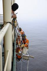 Paint Job (Mental Octopus) Tags: ship vessel cargoship cargovessel heavycargoship seaman seamen worker painting work manuallabour above dangerous safetygear sea freightnavigation asia