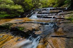 Upper Leura Cascades, Blue Mountains (Orange Orb Photography) Tags: australia nature landscape leura bluemountains waterfall leauracascades nsw