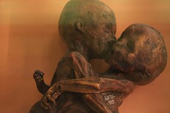 IMG_2269 (anthrax013) Tags: saint petersburg kunstkamera anatomy science medicine dead baby death necro necrophilia corpse abortion