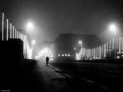 339 days to Christmas (René Mollet) Tags: light street streetphotography shadow silhouette schwarzweiss blackandwhite bw basel xmaslights xmas fog foggy mist misty renémollet night nightshot nightwalker
