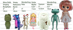 Bryophyte VS Toys - Height Chart (Orchids Designs) Tags: treeson blythe middie petite wonderfrog wandafrog shoko nakazawa byron rangeron vinyl toy designer artist pop collectable