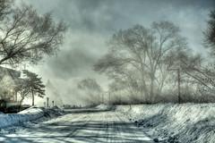 ASPECTS HIVERNAUX / WINTER ASPECTS (BLEUnord) Tags: hiver winter montréal urbain urban neige snow vents winds poudrerie chemin road îlenotredame blowing blow hdr