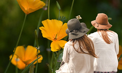 Nature Watchers (swong95765) Tags: women watchers observations hats nature flowers bokeh beauty peaceful seated
