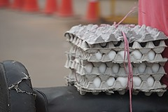 Egg Transport (Let Ideas Compete) Tags: india eggs gwalior fresheggs indianculture