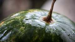 DSC_1441 (Valentin Ilas) Tags: watermellon
