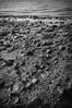 Gradient (timoppi) Tags: nature finland helsinki outdoor balticsea syksy vuosaari kallahti ulkoilu