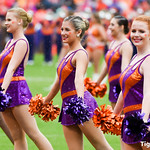 Georgia Tech at Clemson - 2015 Photos