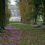 Beaupréau (Maine-et-Loire) thumbnail