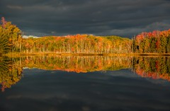 Red Jack Reflections (Cole Chase Photography) Tags: autumn fall sunrise canon reflections october michigan 5d upperpeninsula markiii