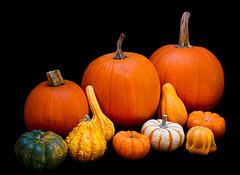 9  15-960 (Carolina explorer photographer) Tags: autumn fall outdoors nc northcarolina fallfoliage autumnsharvest charleskhardinphotography charleshardin httpswwwfacebookcomchardinphotography