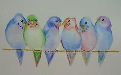 Little cute birds, by Mônica - DSC00462 (Dona Minúcia) Tags: cute bird art animal watercolor painting paper branch arte passarinho pássaro study fofo pintura lindos galho aquarela gracinha