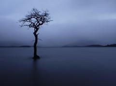 Who'll stop the rain? (kenny barker) Tags: blue scotland lochlomond millarochybay