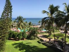 Exotic coast of Dakar (Çağlar TÜRKMEN) Tags: ocean africa view scene palm afrika senegal dakar palmiye iphone manzara okyanus