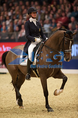 IMG_2482 (RPG PHOTOGRAPHY) Tags: world london cup olympia dressage 2015 tiamo jorinde verwimp