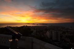 Paisage (arrixaca15) Tags: bird marseille gare telescope notre dame isla gaviota castillo montecristo anochecer mouette ille dif telescopio