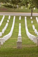 CN4A0211 - Arlington National Cemetery (Syed HJ) Tags: canoneos5dmarkiii canoneos5diii canon5diii canon 5d 5diii canonef70200mmf28lisiiusm canonef70200mmf28lisii canonef70200mmf28l canonef70200mm canon70200mm 70200mm arlingtonnationalcemeteryarlingtonva arlingtonnationalcemetery arlingtonva cemetery arlington va graveyard gravestones
