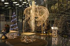 2016 MyZeil Frankfurt - Weihnachtsdekoration (mercatormovens) Tags: weihnachten xmas weihnachtsdekoration weihnachtsmarktfrankfurt advent frankfurt myzeil weihnachtsbäume