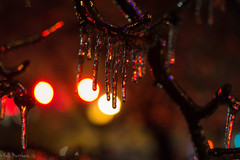 Ice Ice Baby (kellimatthews) Tags: ice icestorm macro frozen bokeh night outdoor icicles red dof oregon winter december