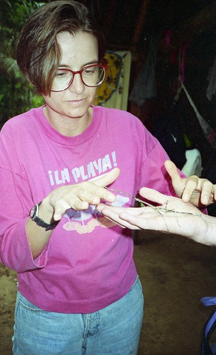 Deb examines a stick insect