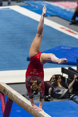 Utah vs Michigan-2017-141 (fascination30) Tags: utah utes michigan gymnastics