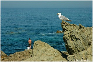 Portugal -  Porto Covo (Alentejo Coast). Les pêcheurs.