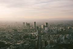 Tokyo skyline from Mori Tower skydeck — 六本木ヒルズ展望台 Tokyo City View, Roppongi. (kytan) Tags: japan skydeck tokyocityview metropolitan tokyo roppongihills roppongi observationdeck moritower skyscraper tower tokyoskyline 日本 東京 六本木ヒルズ展望台 minato heartoftokyo