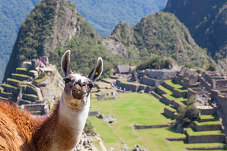 Please vote for me, Photo & Travel Opportunity in South America #vamoslatamcontest