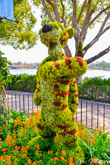 Tigger (disneylori) Tags: tigger winniethepooh topiary flowerandgardenfestival unitedkingdom worldshowcase epcot waltdisneyworld disneyworld wdw disney