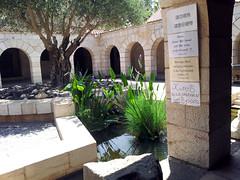20120526_110136 (missionari.verbiti) Tags: verbiti amiciverbiti terrasanta turismo israele neghev marmorto qumran gerusalemme betlemme gerico nazareth tabor cafarnao hermon cesarea