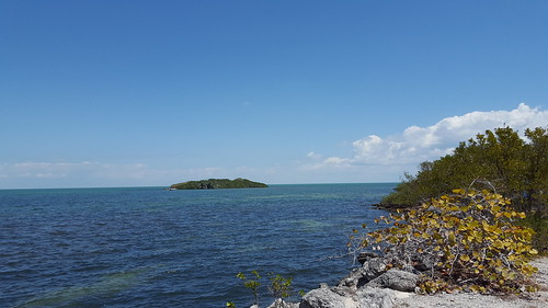 The view of Florida Bay from Crane Point