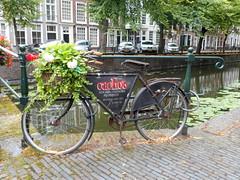 Maliestraat (vanderven.patrick) Tags: bridge nikon reclame den bikes brug haag fiets maliestraat s3600