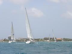 227-DSCN9836 (eric15) Tags: sea beach water race cat for boat eva surf sailing wind offshore sailors luna aruba international dash sail regatta sailor optimist sunfish oranjestad surfside