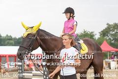 157L_0018 (Lukas Krajicek) Tags: cz kon koně českárepublika jihočeskýkraj parkur strmilov olešná eskárepublika jihoeskýkraj
