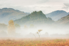The Smallest (Vemsteroo) Tags: uk morning autumn mist mountains tree fall nature water fog sunrise canon landscape warm soft natural derwent lakedistrict valley cumbria fells 5d nationalparks 70200mm solitarytree mkiii borrowdale beautyinnature kewswick visitbritain
