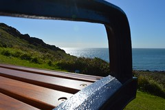 Bench with a view (robjvale) Tags: ocean wood uk sea sun slr beach nature grass swansea wales digital bench relax outside outdoors coast bush nikon rocks view outdoor seat scenic sunny mumbles 3200 glisten