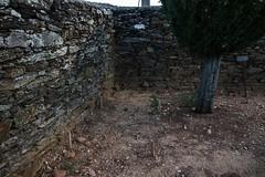 Prospección en Alcañices (Zamora) (7)