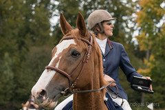 DSC01988_s (AndiP66) Tags: springen derby wohleiberg derbywohleiberg bern samstag saturday 3oktober2015 2015 oktober october pferd horse schweiz switzerland kantonbern cantonofbern concours contest wettbewerb horsejumping springreiten pferdespringen equestrian sports pferdesport sport sony sonyalpha 77markii 77ii 77m2 a77ii alpha ilca77m2 slta77ii sony70400mm f456 sony70400mmf456gssmii sal70400g2 andreaspeters frauenkappelen ch