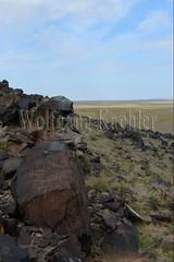 30095297 (wolfgangkaehler) Tags: old animal animals rock asian ancient asia desert mongolia centralasia petroglyph gobi blackmountains petroglyphs ibex mongolian gobidesert southernmongolia