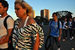 Golden row (Otacílio Rodrigues) Tags: city bridge light cidade people sun luz sol brasil pessoas crossing candid ponte streetphoto oro youngsters resende jovens atravessando