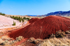Painted Hills, Oregon - 60 (www.bazpics.com) Tags: park usa color colour oregon america john landscape high scenery colorful day unitedstates desert state pacific northwest path cove walk or painted hill ground hike hills clay pacificnorthwest colourful mitchell hillside gem hideen