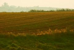 Poranna mgła 13 (Hejma (+/- 5400 faves and 1,7 milion views)) Tags: red nature fog landscape outside poland polska august natura mgła lightandshade czerwony światłoicień krajobraz sierpień baulk miedza cultivations uprawy chłopskiepola płaskowyżproszowicki peasantfields plateauproszowicki