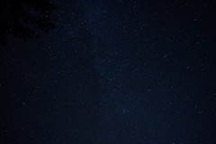 DSC_0812 (mystic_violet) Tags: november autumn trees fall night dark stars austria sterreich nacht herbst andromeda bume niedersterreich sterne dunkelheit loweraustria hocheck sternenhimmel furth starrysky starlitsky astrofotografie nikond3300 darktable starryheavens spangledsky furthandertriesting starspatteredsky