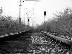 One way (Latjanski) Tags: railroad bw white black train flat serbia rail direction directions voz railroads srbija latjanski