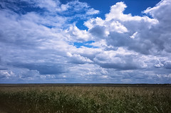 Autumn. Belarus. Route M1.
