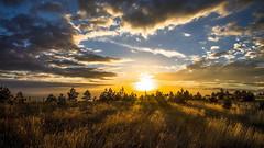 More light for you. (drstar.) Tags: light sunset sun sunlight nikon d610 flickrturkey