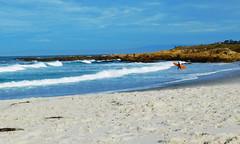 DSCN0105 copy (vanessadoulames) Tags: ocean california sea beach monterey surf pacific surfer norcal pacificgrove asilomar