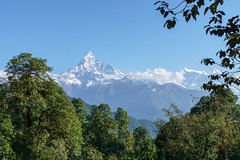 Machapuchare 6993m (Poxxel) Tags: nepal annapurnaii machapuchare annapurnaiv
