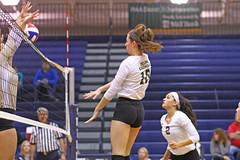 IMG_8314 (SJH Foto) Tags: girls volleyball high school york delone catholic team teen teenager jump spike burst mode net battle block action shot midair