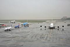 AFTER YOU, MAJESTIC SUPER (Rich Snyder--Jetarazzi Photography) Tags: emirates uae ek airbus a380 a380800 a380861 a388 a6eoc alaskaairlines alaska asa as boeing 737 737900 737990 b737 b739 n303as suncountryairlines suncountry scx sy 737800 7378bk b738 n815sy royaldutchairlines klm kl 787 7879 b787 b789 dreamliner phbha airfrance afr af 777 777300er 777328er b777 b77w fgqsd arriving arrival approach approaching sanfranciscointernationalairport sfo ksfo millbrae california ca airplane airliner aircraft jet plane jetliner ramptowera rcta atower
