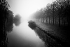 (XanderG5) Tags: blackandwhite nature netherlands water river landscape fog gloomy ethereal art contrast sigma 50mm